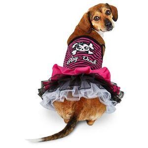 "Petco bootique ""Play Dead"" skull crossbones dog dress Halloween XXS XS M L"
