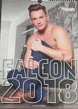 Falcon Studios 2018 Calendar 12X18 amazing condition - SeXy Boys & Men= Hot!