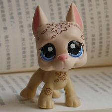 """IN HAND LPS Littlest pet shop MINI 3"""" FIGURE TOY blue eye flower Great Dane dog"""