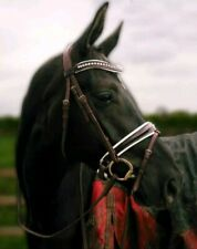 Clear//Jet Adams-Tack Leather Horse Browband Clear + 3 Rows + Clear