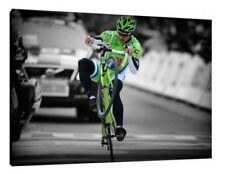 Peter Sagan 30x20 Inch Canvas Cycling Framed Picture Wall Art Work