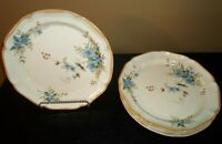 "(4) Mikasa Garden Club Daydreams 11"" Dinner Plates"