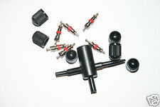 TYRE VALVE REPAIR KEY TOOL REMOVER THREAD CLEANER + 6 CORES AND 6 DUST CAPS