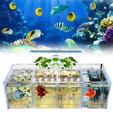2/3/4 Grids Aquarium LED Acrylic Betta Fish Tank Set Desktop Water Pump  UK