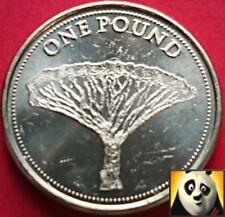 2016 Gibilterra £ 1 una sterlina L'albero Drago DRACAENA MARGINATA aUNC Coin
