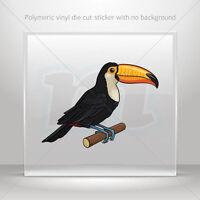 Stickers Sticker Super Chicken Atv Bike polymeric vinyl Garage st5 X3869