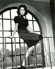 "ELIZABETH TAYLOR IN ""SUDDENLY, LAST SUMMER"" - 8X10 PUBLICITY PHOTO (AB-015)"