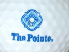 (1) The Pointe Golf Course Logo Golf Ball (Light Blue)