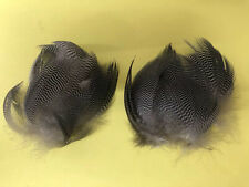 Greenwing Teal Flank Feathers (50 Ct)