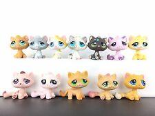 Lot 12 Littlest Pet Shop 110 552 349 52 300 177 53 576 896 606 Tabby Cat / LPS