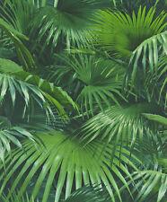 Crispy Paper Vlies-Tapete 524901 Rasch Palmen Dschungel Natur grün /2.62 Euro/m²