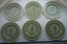 """One Susie Cooper Chinese Fern 8"""" Green Plate hand painted"""