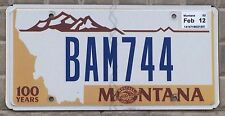 TARGA USA auto MONTANA Centennial 1889-1989 ORIGINALE Centenario dello Stato