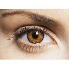 lentilles de couleur honey miel 1 an - contact lenses