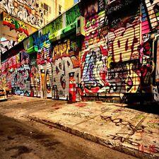 10X10FT Graffiti Thin Vinyl Backdrop Photography Photo Studio Background TA48