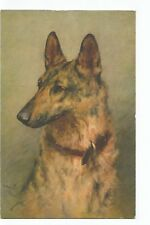 ILLUSTRATION CHIENS , DOGS , BERGER ALLEMAND