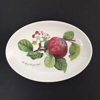 Portmeirion Pottery Oval Baking Serving Decorative Dish The Hoary Morning Apple