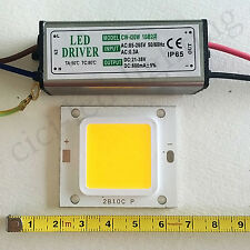 20W LED Chip Warm White 3000-3200K + LED Driver Power supply for floodlight IP65