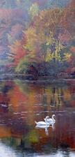 Autumn Reflections by Terry Isaac