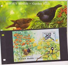Presentazione In Jersey Confezione Da 2007 Birdlife Garden Birds TIMBRO foglio BLACKBIRD COVER