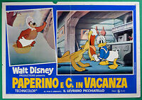 T29 FOTOBUSTA DONALD UND C. IN URLAUB WALT DISNEY ANIMATION KARTON ANIMIERTE 1