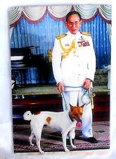 Bild picture König King Bhumibol Adulyadej RAMA IX Thailand 15x10 cm  (s34