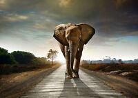Elephant Africa Wildlife Landscape Art Giant Poster Print - A0 A1 A2 A3 A4 Sizes