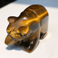 Natural Tiger EYe Stone Quartz Crystal Bear Carving Reiki Healing Collection