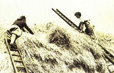 Postcard Nostalgia 1940 WW2 Land Girls Thatching Roof Essex Reproduction Card