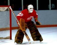 Rogatien Vachon Detroit Red Wings 8x10 Photo