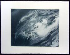 Robert Katona PEGASUS etching blue Hand Signed FINE ART, SUBMIT BEST OFFER