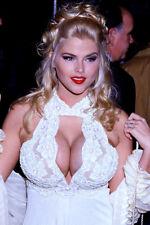 Anna Nicole Smith Cleavage Busty 11x17 Mini Poster