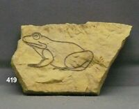 Frog Rock Art Pictograph Etching Carving Limestone Garden Art Nature Branded