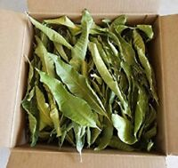 35 Pcs Fresh Dried Mango leaves 100%ORGANIC Medicine Natural  CEYLON
