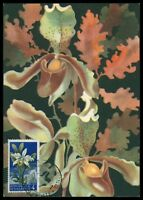 SAN MARINO MK 1957 FLORA ORCHIDEEN ORCHIDEE ORCHID CARTE MAXIMUM CARD MC CM am71