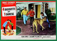 T63 Fotobusta 4 Bassets Per 1 Danés Walt Disney Dean Jones Suzanne Pleshette