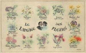 The Language of Flowers (D)