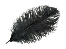 "10 Pieces 6-8"" Black Ostrich Drab Body Feathers Halloween Mask costume Jewelry"
