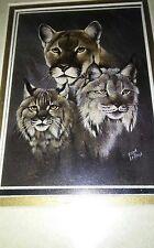 Detailed Eddie Lepage North America Endangered Species Print Framed Reprduction