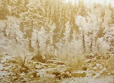 "Paula Crane ""Springs at Steamboat"" Signed Ltd ed Art Etching Colorado MAKE OFFER"