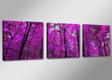 Cuadros en Lienzo + 150 x 50 cm Nr. 4210 Purple Bosque