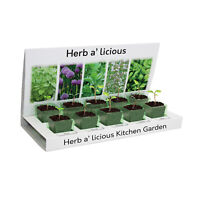 Herbs-a-licious Grow Your Own kit 5 Varieties to Grow From Seed, Eco Friendly