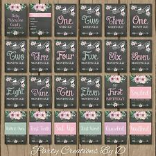 "Floral Chalkboard Pink Baby Girl Moments Milestones Cards 23Pack 4×6"" Photo prop"