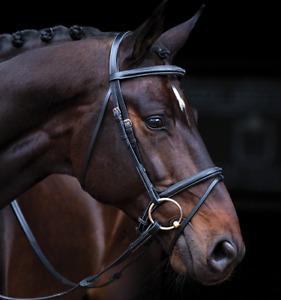 Horseware Amigo Deluxe Flash Bridle