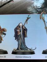 Warhammer Quest Cursed City Heroes Octren Glimscry Shyish Death Wizard Mordheim