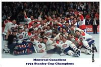 1993 Stanley Cup Champion Montreal Canadiens Team Picture Color 8 X 12 Photo