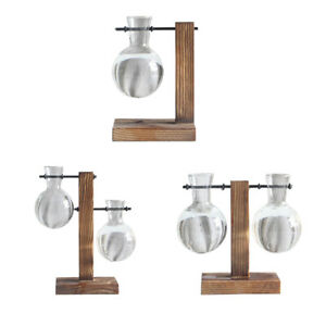 3 Styles Decorative Clear Glass Planter Bulb Vases with Wood Holder Stand US