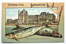 FISH BORDER Marlborough Blenheim HOTEL Greetings from Atlantic City NJ Postcard