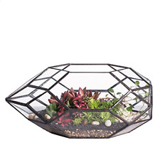 Large Handmade Irregular Polyhedral Geometric Glass Terrarium Planter Holder Pot