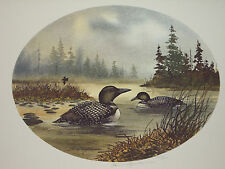David Hagerbaumer  hand signed limited edition art print    LOONS